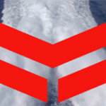 Yanmar Launches New Premium Branding at America's Cup