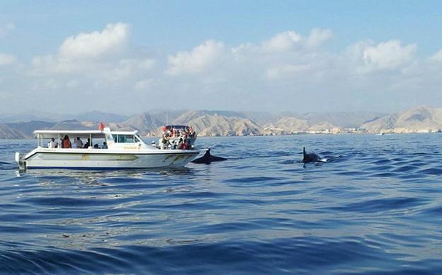 coastal excursions passenger boats